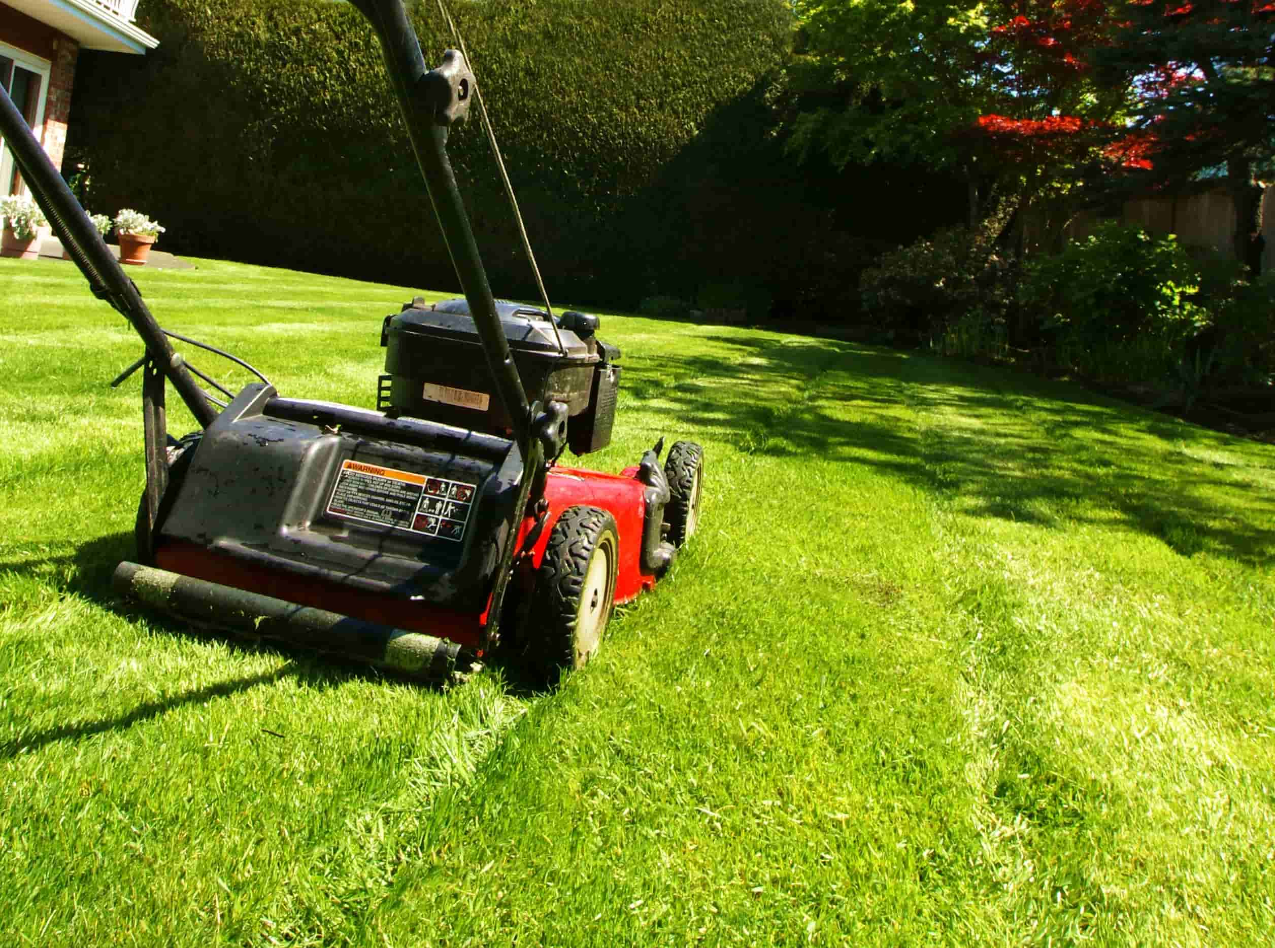 Photo of a lawn mowing machine